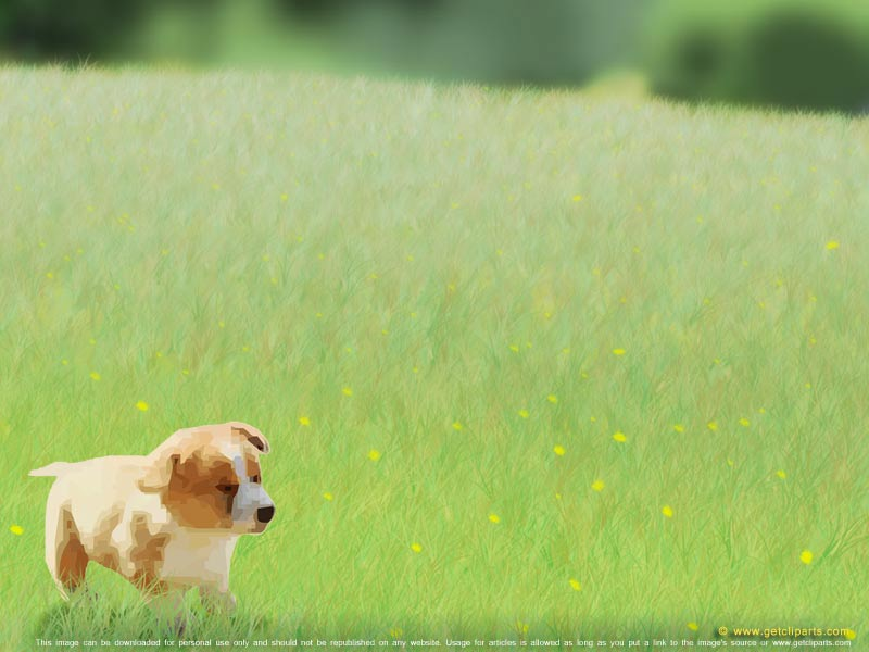 Cute Puppy Dog, an animal theme for powerpoint background and desktop