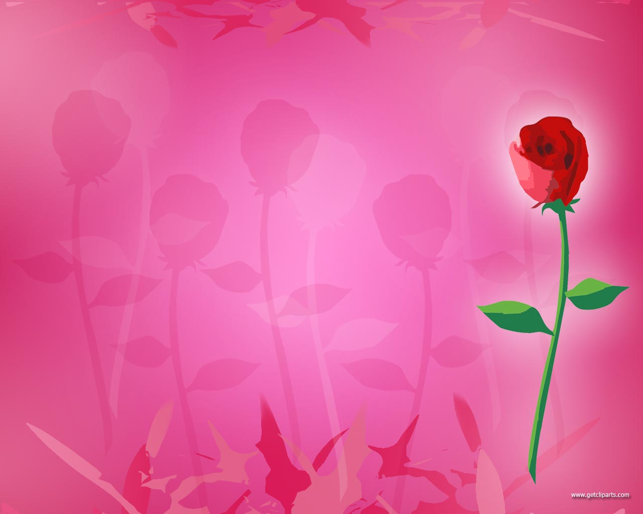 Faded Rose Background