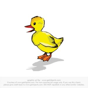 duck cartoon drawing